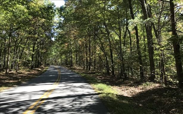 Dean Gap Road, Blairsville, GA - USA (photo 3)
