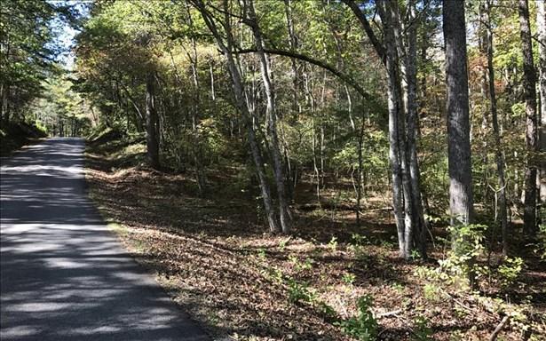 Dean Gap Road, Blairsville, GA - USA (photo 5)