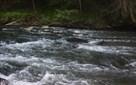 River Ridge, Ellijay, GA - USA (photo 1)
