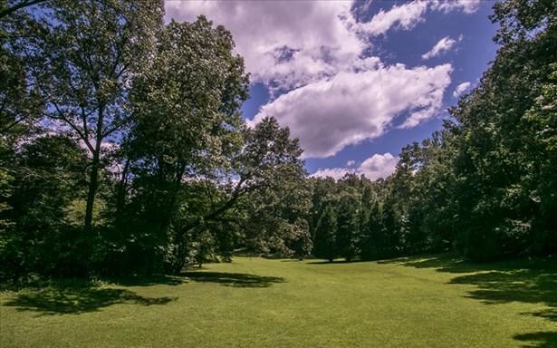 668 White Pine Trail, Suches, GA - USA (photo 5)