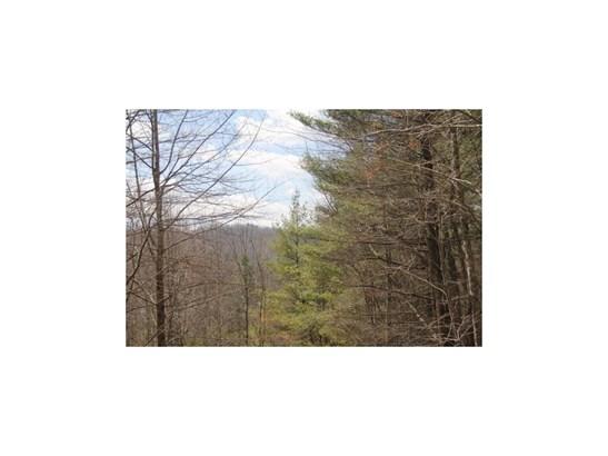 Lot 15 Appalachian Trail, Morganton, GA - USA (photo 3)