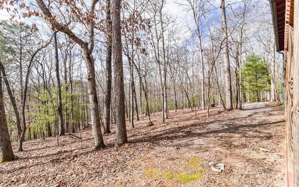 58 Shade Tree Lane, Mineral Bluff, GA - USA (photo 2)