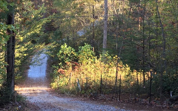 4.9ac Stuart Mountain, Mineral Bluff, GA - USA (photo 3)
