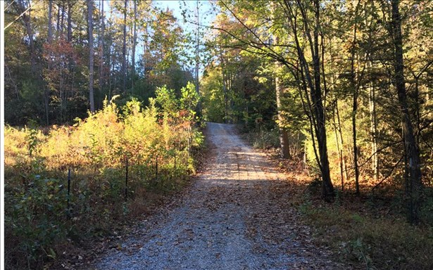 4.9ac Stuart Mountain, Mineral Bluff, GA - USA (photo 5)