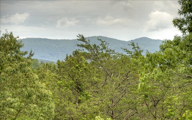 474 Sowers Road, Blue Ridge, GA - USA (photo 4)