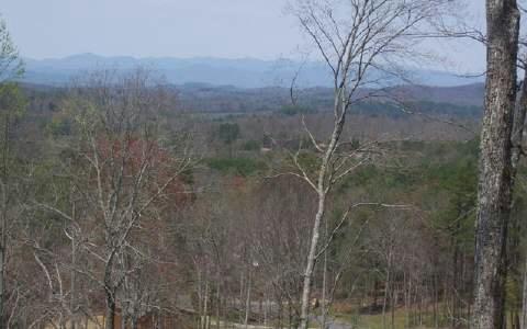 L 24 Ridgeview Mountain, Young Harris, GA - USA (photo 2)