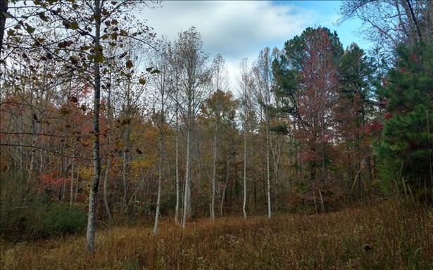 Doublehead Gap, Ellijay, GA - USA (photo 1)