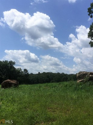 0 Bluegrass Ct, Demorest, GA - USA (photo 2)
