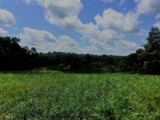0 Bluegrass Ct, Demorest, GA - USA (photo 3)