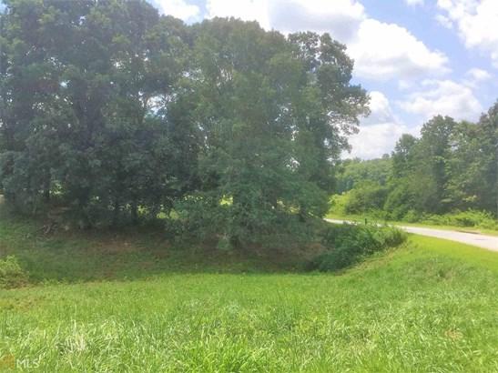 0 Bluegrass Ct, Demorest, GA - USA (photo 4)