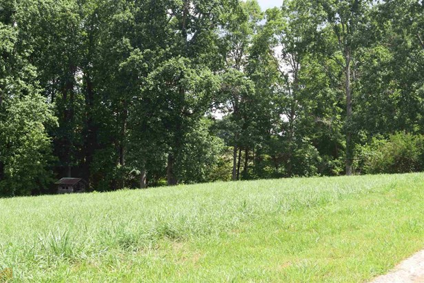 1435 Red Top Ln 158, Demorest, GA - USA (photo 2)