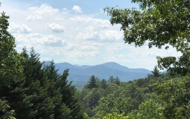 461 Cedar Mtn View, Blairsville, GA - USA (photo 2)