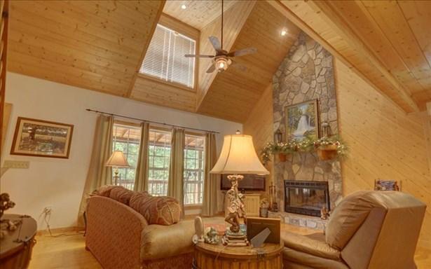 461 Cedar Mtn View, Blairsville, GA - USA (photo 4)