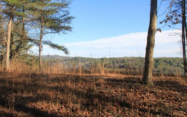 Toccoa Vista, Mineral Bluff, GA - USA (photo 4)