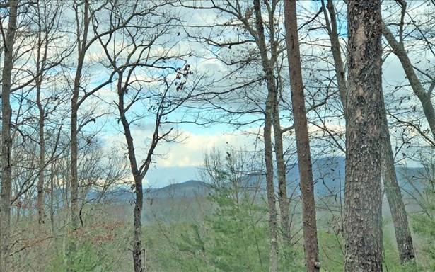 Lt 11 Humphrey Heights, Mineral Bluff, GA - USA (photo 1)