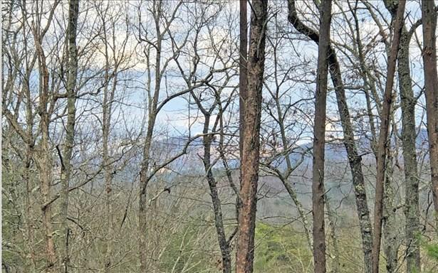 Lt 11 Humphrey Heights, Mineral Bluff, GA - USA (photo 2)