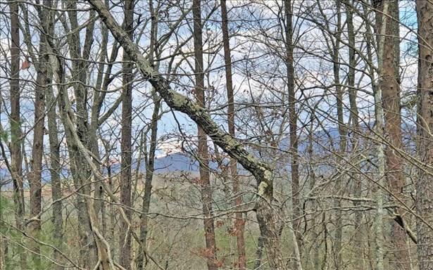 Lt 11 Humphrey Heights, Mineral Bluff, GA - USA (photo 3)