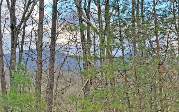 Lt 11 Humphrey Heights, Mineral Bluff, GA - USA (photo 4)