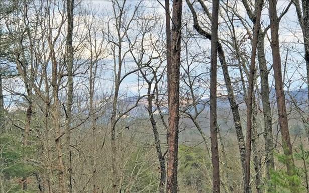 Lt 11 Humphrey Heights, Mineral Bluff, GA - USA (photo 5)