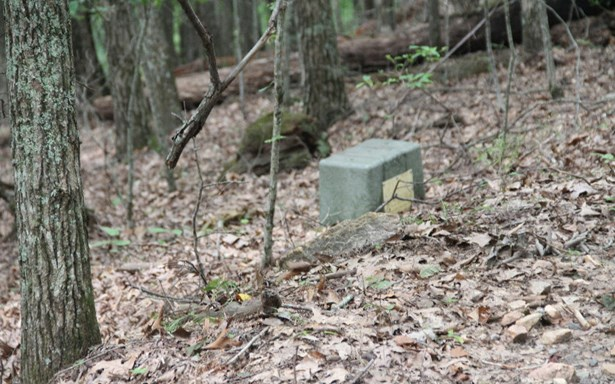 Lt 13 Picklesimer Mountain, Morganton, GA - USA (photo 3)