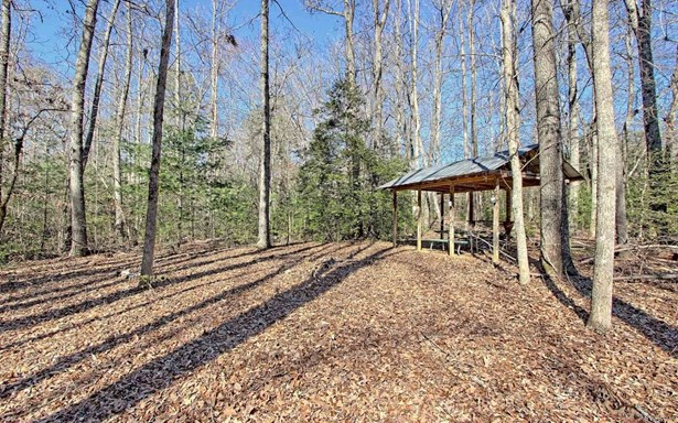 Trackrock Gap Rd, Blairsville, GA - USA (photo 1)