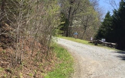 Lot 3 Wolf Creek Estates, Mineral Bluff, GA - USA (photo 5)
