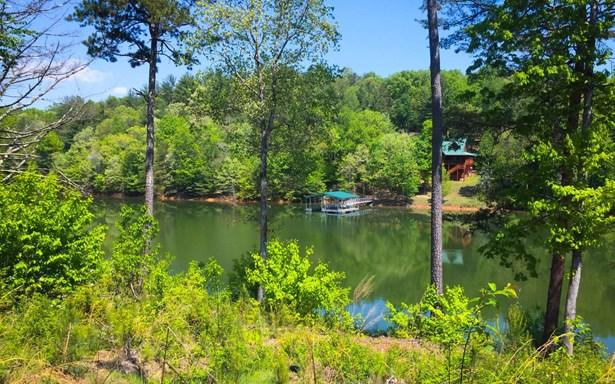308 Thirteen Hundred, Blairsville, GA - USA (photo 3)