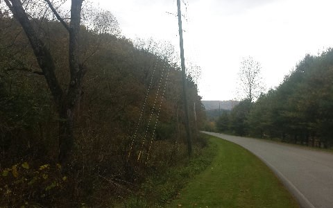 22 Ac Whitepath Road, Ellijay, GA - USA (photo 4)