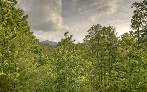 84 Rabbit Ridge, Suches, GA - USA (photo 2)