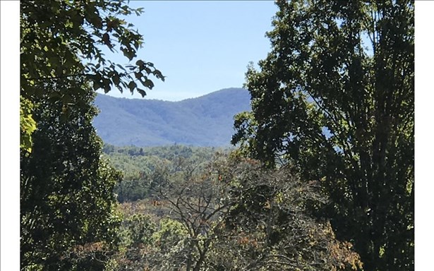 Dean Gap Road, Blairsville, GA - USA (photo 2)
