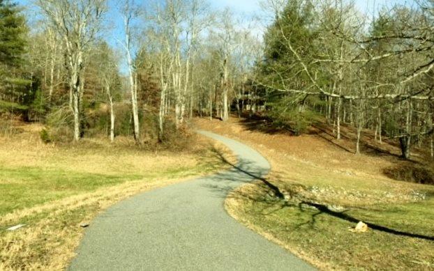 50,51,52 Harbin Woods, Morganton, GA - USA (photo 2)