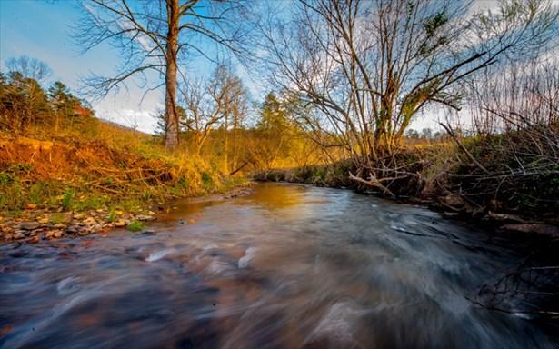11.31 Gilliam Trail, Mineral Bluff, GA - USA (photo 4)