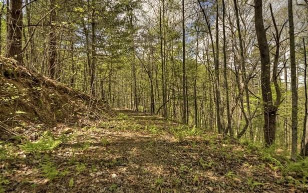 My Mountain Rd, Morganton, GA - USA (photo 5)
