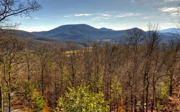 392 Shepherd's Ridge, Morganton, GA - USA (photo 2)
