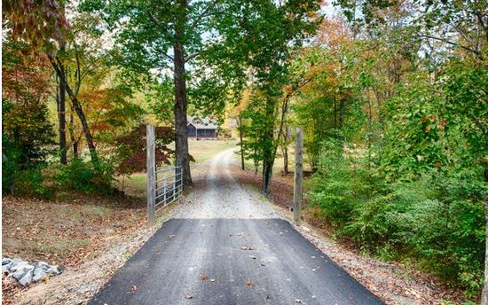 2444 Sugar Creek Rd, Blue Ridge, GA - USA (photo 1)