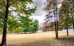 2444 Sugar Creek Rd, Blue Ridge, GA - USA (photo 3)