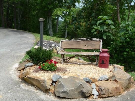 Lot 19 Oceola Drive, Ellijay, GA - USA (photo 5)