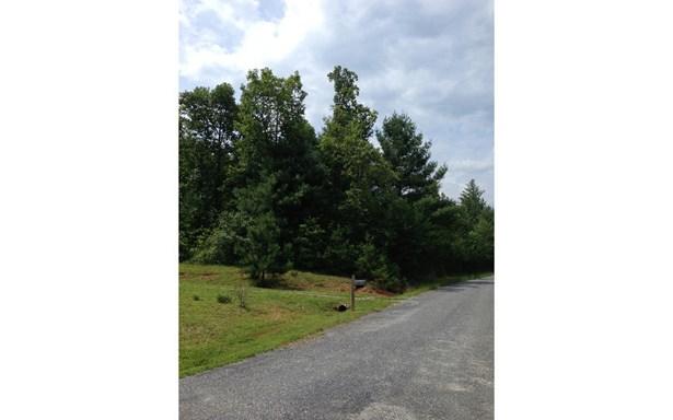 Lt 12 Brookhaven Lane, Young Harris, GA - USA (photo 2)