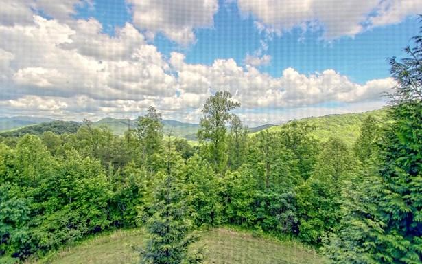 1687 Long Ridge Trl, Hiawassee, GA - USA (photo 3)