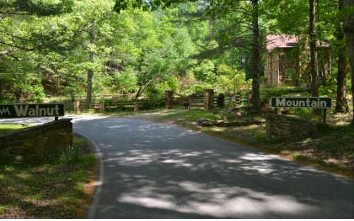 M104 Walnut Mountain, Ellijay, GA - USA (photo 1)