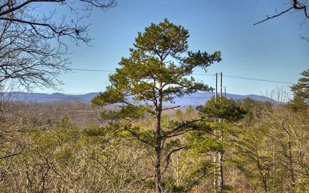 488 Toccoa River Forest, Mineral Bluff, GA - USA (photo 3)