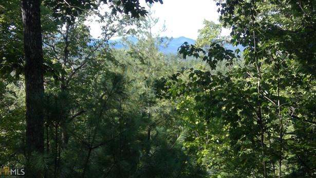 0 Bootleg Mountain 8, Morganton, GA - USA (photo 1)