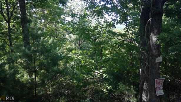 0 Bootleg Mountain 8, Morganton, GA - USA (photo 3)