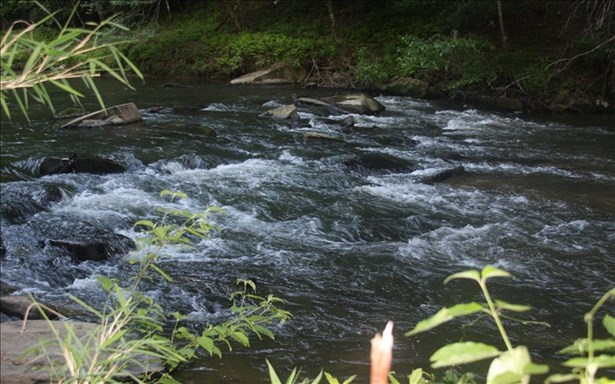 River Ridge, Ellijay, GA - USA (photo 4)
