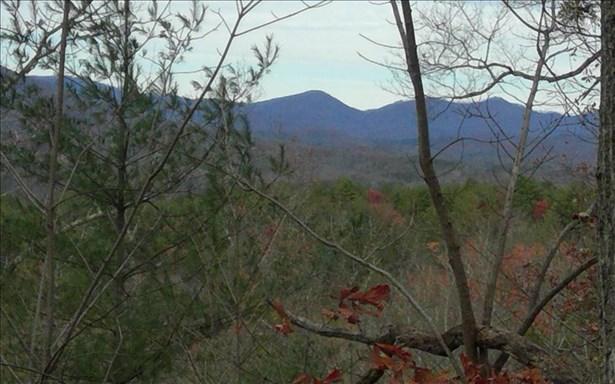 Lot8 Bootleg Mountain, Morganton, GA - USA (photo 1)