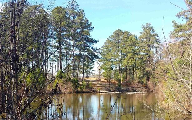 2622 Beaver Lake Rd, Gay, GA - USA (photo 5)
