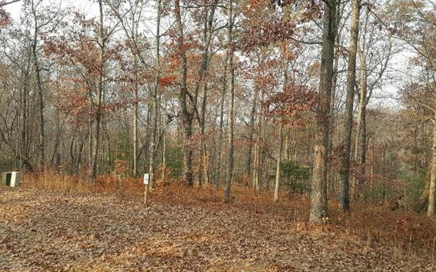 Lt144 Old Toccoa Farm, Mineral Bluff, GA - USA (photo 2)