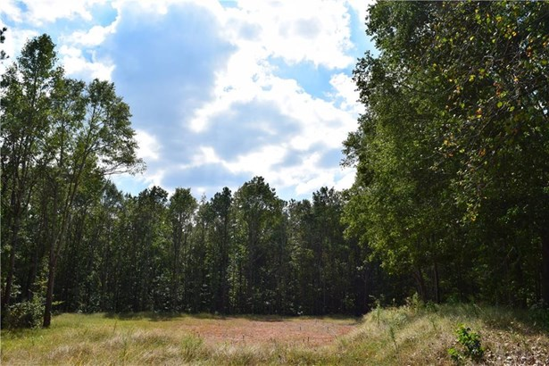 150 Garrison Trail, Canton, GA - USA (photo 5)