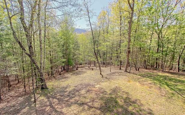 256 Lonesome Pine Trail, Blairsville, GA - USA (photo 5)