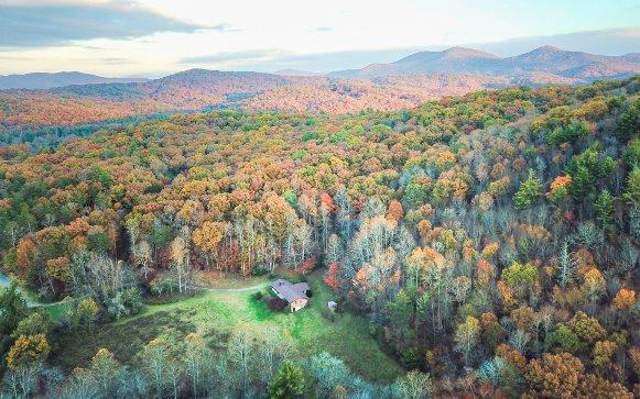 577 Black Ankle Creek Rd, Blue Ridge, GA - USA (photo 4)